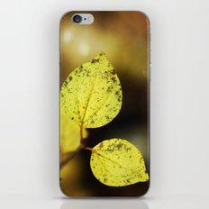 yellow leaves. iPhone & iPod Skin