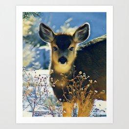 Blue Baby Deer in Winter Light by CheyAnne Sexton Art Print