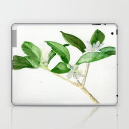 Sway With Me Laptop & iPad Skin