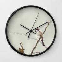 sparrow Wall Clocks featuring SPARROW by SUNLIGHT STUDIOS  Monika Strigel