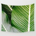 Big Leaves - Tropical Nature Photography by colorandpatterns