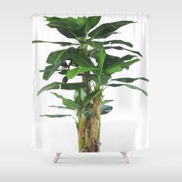 TROPICAL GREEN1 Shower Curtain