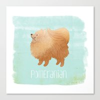 pomeranian Canvas Prints featuring Pomeranian by 52 Dogs