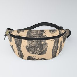 Iconographic Encyclopedia of Science, Literature and Art (1851) - The Human Nervous System 2 Fanny Pack