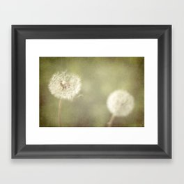 Sweet Dandelions  Framed Art Print