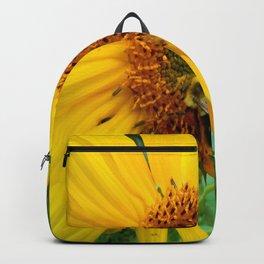all things alike Backpack