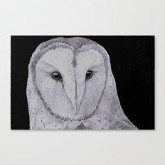Barn Owl Pencil Canvas Print