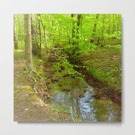 Park Stream Metal Print