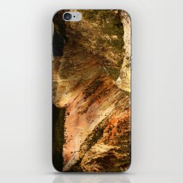 Yellow Rocks Of The Yellowstone Valley iPhone Skin