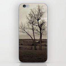 Tennessee iPhone & iPod Skin