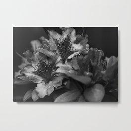 Savoring Every Moment (Black & White) Metal Print