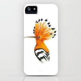 Hoopoe colourful bird iPhone Case
