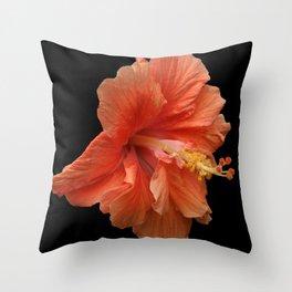 Double Orange Hibiscus DPG160419 Throw Pillow