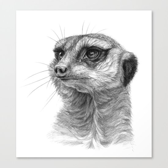 Meerkat-portrait G035 Canvas Print
