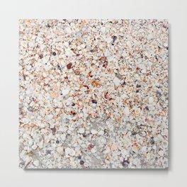 Sea Shells by the Sea Shore Metal Print