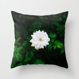 Oklahoma Blooms Throw Pillow