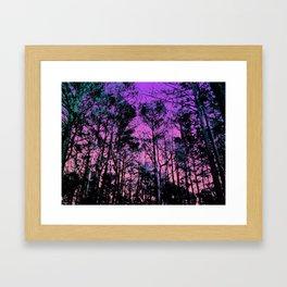 Forest (Sunset) Framed Art Print