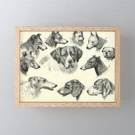 Vintage Print - All About Animals (1900) - The Dog Family Framed Mini Art Print