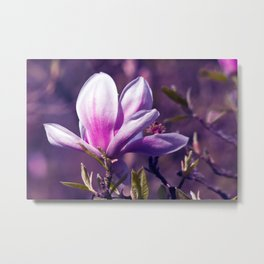 Ultra Violet Magnolia Metal Print