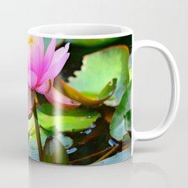 Water Lily Flower Aquatic Plant Coffee Mug