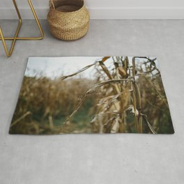 Autumn Cornstalk II Rug