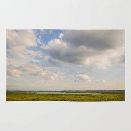 floridian prairie Rug