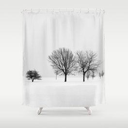Lakeview Trees In Snow Shower Curtain
