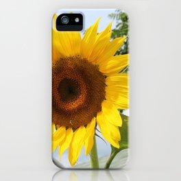 une seule fleur iPhone Case