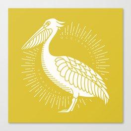 Golden Brown Pelican Canvas Print