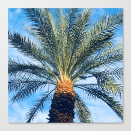 Sun-Dipped Tropical Palm Tree in Azure Blue Sky Canvas Print
