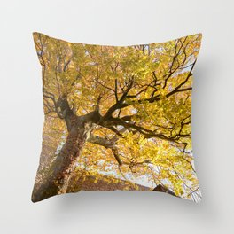 Protected and Protecting Throw Pillow