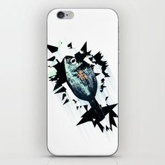 bream fish iPhone & iPod Skin