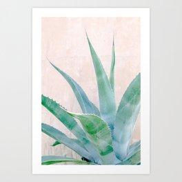 Texas Aloe Art Print