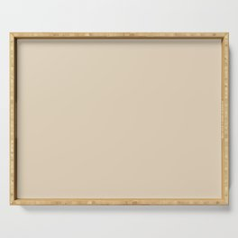 Best Seller Creamy White Inspired By PPG Glidden Alpaca Wool Cream PPG14-19 Solid Color Serving Tray