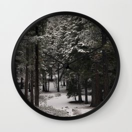 Carol Highsmith - Snow Covered Trees Wall Clock