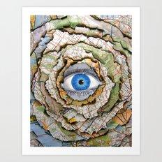 Seeing Through Illusions  Art Print