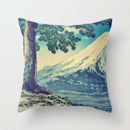 After the Snows in Sekihara Throw Pillow