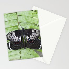 Mating Swallowtail Butterfly Stationery Cards