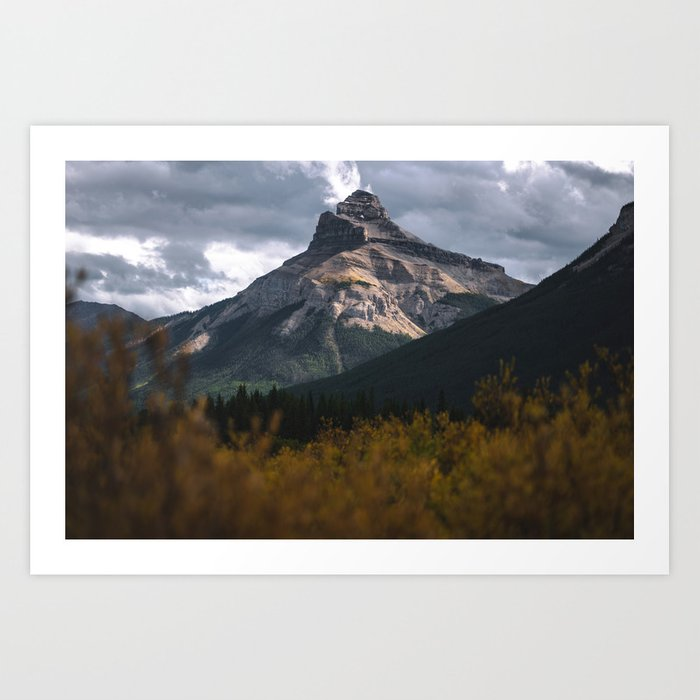 Moose Meadows, Alberta Art Print