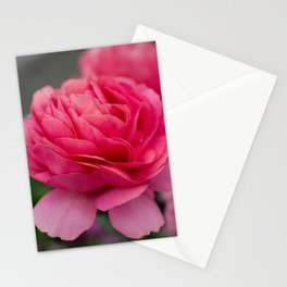 Vivid pink flower Stationery Cards