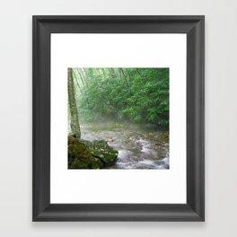 Davidson River Framed Art Print