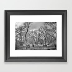 Phantom forest Framed Art Print