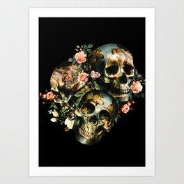 Skull  & Venus Kunstdrucke