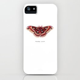 Promethea Silkmoth (Callosamia promethea) iPhone Case