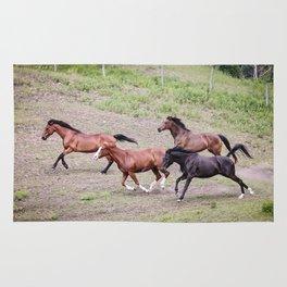Running Herd Rug