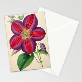 Smith, Worthington G. (1835-1917) - The Floral Magazine 1869 - Clematis Magnifica Stationery Cards