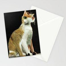 KatzenJammer 10 Stationery Cards