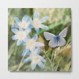 Butterfly :: Blue Sky Wings Metal Print
