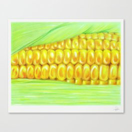Color pencil Corn Canvas Print