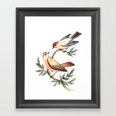 Bird lovers Framed Art Print